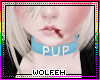 ♡ blue pup collar