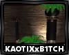 Tarua Plant V2
