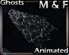 VA Animated Spirit � F