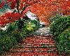 Garden Staircase Scene