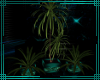 ~MS~ Plant Trio