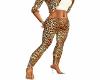 Sexy Pants Leopard Print