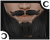 [Pablo] Greying Beard