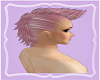 ** Pink Mohawk**