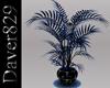 [D] Noc Blue Plant