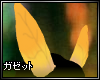 |G| Autumn Leafeon Ears