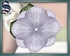[S]Add-On Flower 03