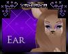.xS. Deer|Ear