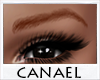 [CNL]Copper eyebrows