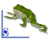 *S* Tiana_Naveen Frog
