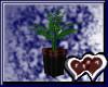 Plant V1