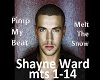 Shayne ward- melt snow