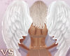 {VS} Angel Wings