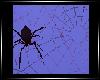 [N] Spider Webs Req