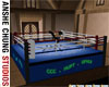 [ACS] BOXING RING