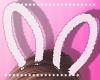 Bunny Ears W