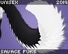 . Leki 2.0   tail
