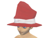 Crash HAT santa