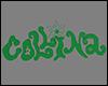 +Logo 2+