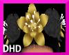 Black Velvet Flowers