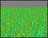 +Grass+
