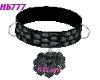 HB777 CSTM Collar PoI GA