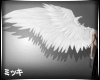 ! White Angle Wings #F