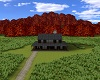 ~CB Fall Weed Farm