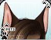 [Pets] Kimi | ears v2