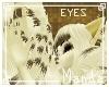 .M. Steamy Eyes Unisex