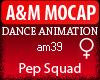 A&M Dance *Pep Squad*