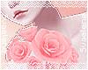 Pink Shoulder Roses R