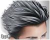 [ミ] Silver Style Hair