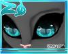 Tibby | Eyes