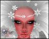 D- Winter Flake Mask