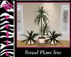 |PQ|Plant Trio