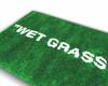 """WetGrass"",rug2 bigger"