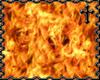 * Portable Fire BG
