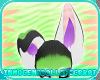+ID+ Diorr Ears V3