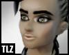 [TLZ]SilverStreak Skin D