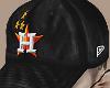 houston astro