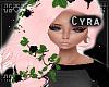 | Pastel Pink Anastasia
