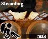 [Hie] Steambug M