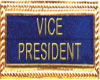 !!A!! Vice President