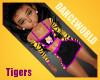 Hattiesburg Tigers 4