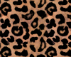 Leopard room wall