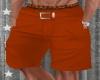 Tropical Summer O Shorts