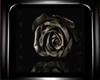 [EB]Black Rose pic&frame