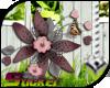 [ND]Flowers Bouquet™ •A•