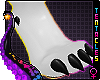 🐾 Cute Paws Black F